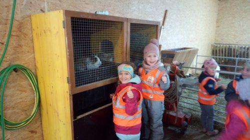 In der Fastenzeit hatten die Kinder zwei Häschen in Pflege.