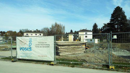 Neu in verdichteter Bauweise wird die Siedlung im Feldmoos von der Vogewosi errichtet.