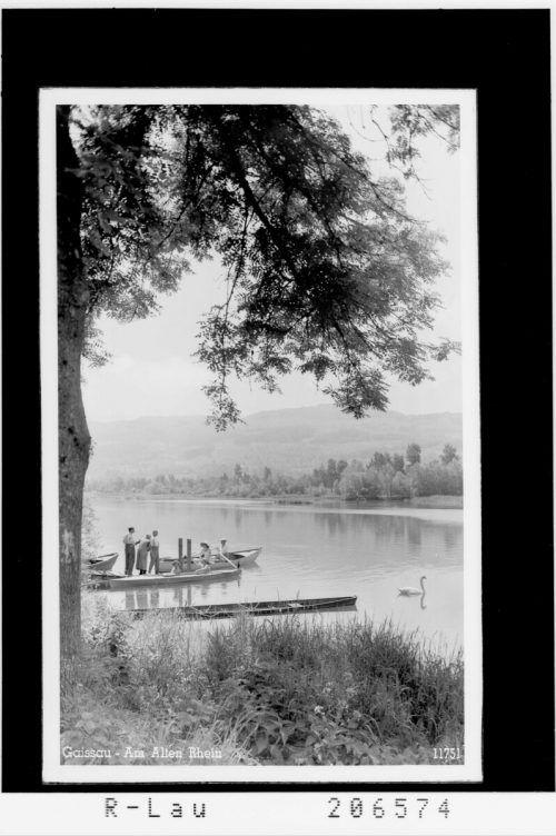 So sah der Alte Rhein imJahr 1939 aus.
