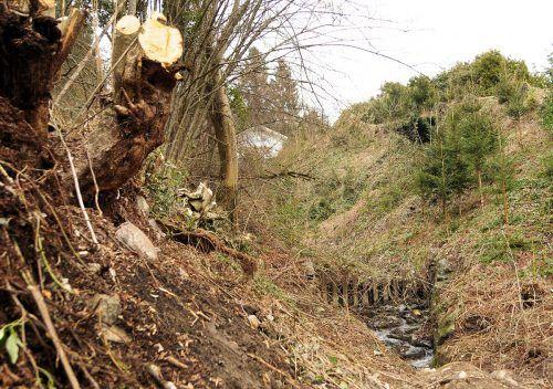 Der Fesslerwaldgraben verläuft hier in Kennelbach unterhalb der Pfarrkirche. Er muss saniert werden. ajk
