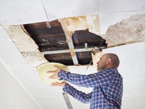 So weit sollte man es bei einem undichten Dach auf keinen Fall kommen lassen. Shutterstock