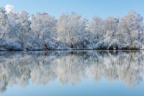 Später Schnee.Johannes Gregotsch