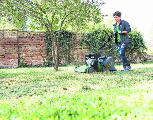 Vertikutieren ist sinnvoll, wenn Ihr Rasen verfilzt und vermoost ist. RWA