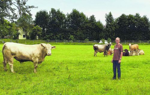 VN-Tierschutzpreisträger Elmar Weissenbach mit Mutterkuhherde und Charolais-Stier auf seinem Biohof in Götzis.
