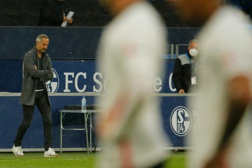 Adi Hütter war nach der 3:4-Niederlage auf Schalke schwer geknickt.apa
