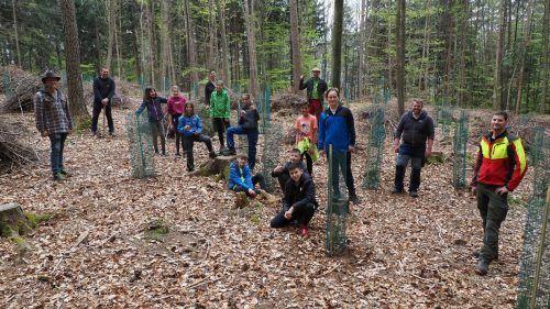 Der Biologieunterricht wurde für die 2a-Klasse der Mittelschule Klaus-Weiler-Fraxern in den Wald verlegt. Thema war ein Aufforstungsprojekt im Klauser Plattenwald.Egle