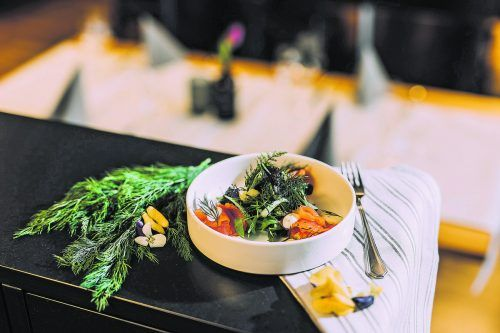 Die Lachsforellenfilets werden für 24 Stunden in einer Marinade aus Zitronensaft, Gewürzen und Kräutern gebeizt.Frederick Sams