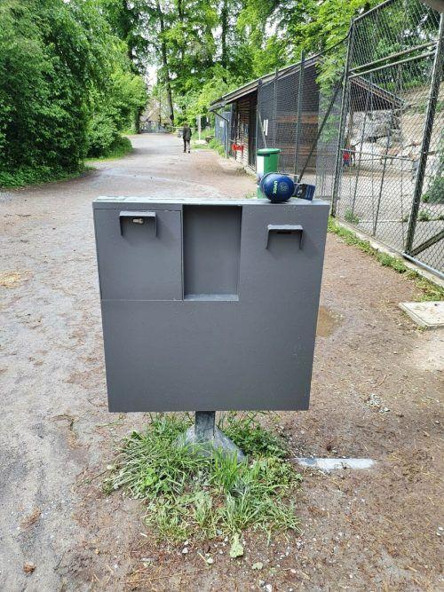 Die neue Spendenkasse bei den Wildschweinen ist sehr massiv – dennoch passierte in der Nacht auf Montag ein weiterer Diebstahl. Wildpark Feldkirch