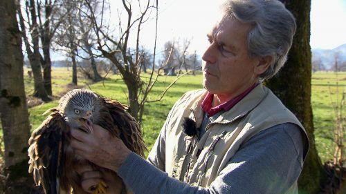 Die Tierschutzpreisträger Katharina Feurstein, Wildtierhilfe Vorarlberg, Karl Heinz Hanny, Tierretter, und der Rheinhof für besonders liebevolle Mensch-Tier-Beziehung.