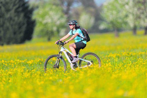 Geschützt sind bei Bikmo alle Fahrräder, egal ob E-Bike, Rennrad oder Mountainbike. VN-Abonnenten sparen 10 Prozent.d. stiplovsek
