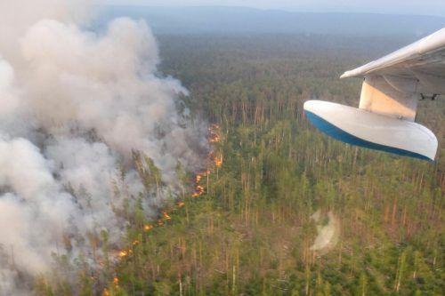 Mit der Hitze ist auch die Waldbrandgefahr gestiegen. Vor allem Sibirien ist betroffen. AFP