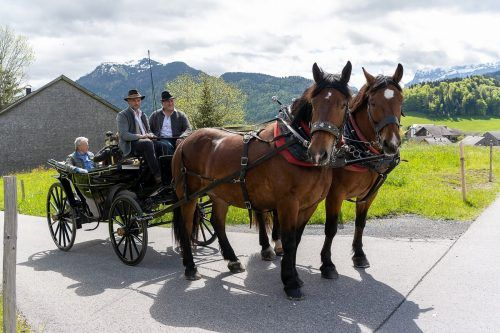 Museumsgäste wurden zu einer Kutschenfahrt eingeladen.