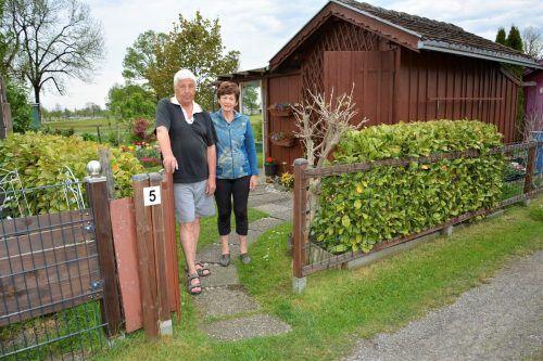 Vor zehn Jahren hat das Ehepaar einen Anteil am Schrebergarten Kurzen-Langen gepachtet.