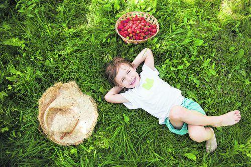 Wer nascht nicht gern fruchtige Beeren direkt vom Strauch?iStock
