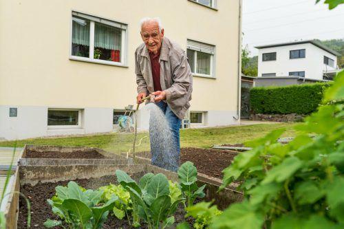 Zu einer ausgewogenen Ernährung gehört für den rüstigen Senior auch Gemüse aus dem eigenen Garten.