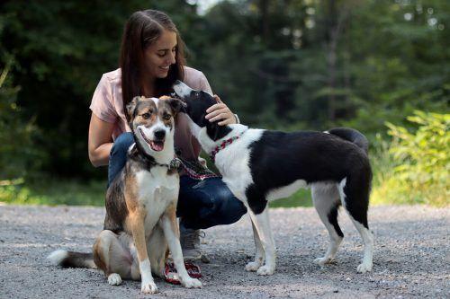 Caroline Waltl versteht sich auch mit Nele und Meeko, den Hunden ihrer Freundin, sehr gut.