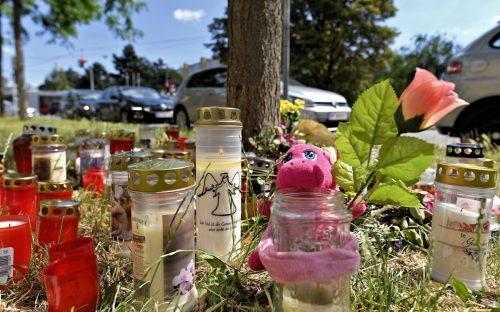 Das tote 13-jährige Mädchen wurde auf einem Grünstreifen in Wien gefunden. APA