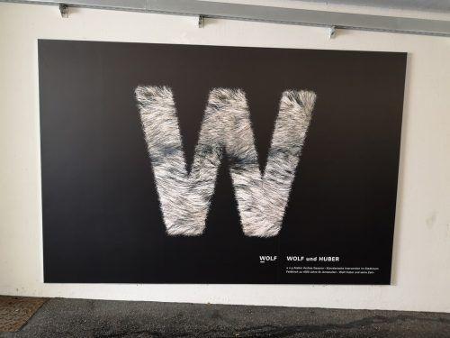 Das visuelle Echo zu Künstler Wolf Huber und seiner Arbeit, ein Werk von Andrea Gassner, ist ab sofort in der James-Joyce-Passage zu sehen.Stadt