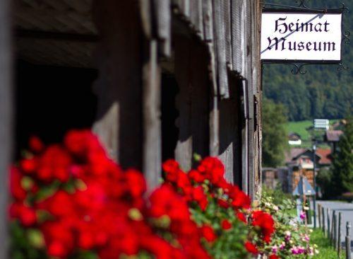 Die Auswahl an Museen in Vorarlberg und darüber hinaus ist groß. vn