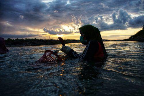 Eine Frau hat sich an der Küste von Lhokseumawe in der indonesischen Provinz Aceh zum Austernsammeln aufgemacht. AFP