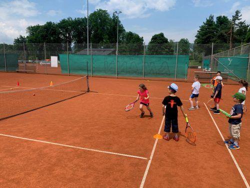 In einer Schnupperstunde durften sich die Vier- bis Fünfjährigen erstmals am Tennisplatz ausprobieren.VN/Knobel