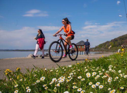 Mit dem Fahrrad zum Frühsport: Warum eigentlich nicht? Dann ist der Körper schon so richtig aufgewärmt und bereit weitere Aktivitäten.vn/paulitsch