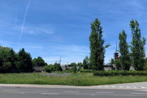 Neben der Ausweichschule in Dornbirn soll der neue Skaterplatz entstehen.Stadt