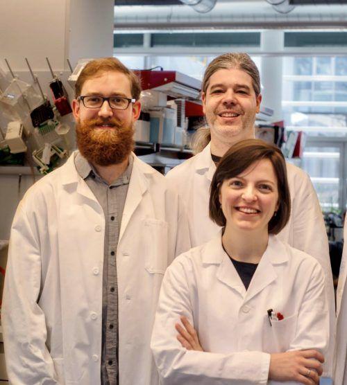 Peter Peneder, Adrian Stütz und Eleni Tomazou (v.l.) von der St. Anna Kinderkrebsforschung setzen große Hoffnung in ihre Studienergebnisse.KS