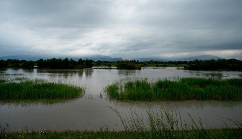 Beim Rheindamm trat das Wasser in die Becken. VN/Stiplovsek