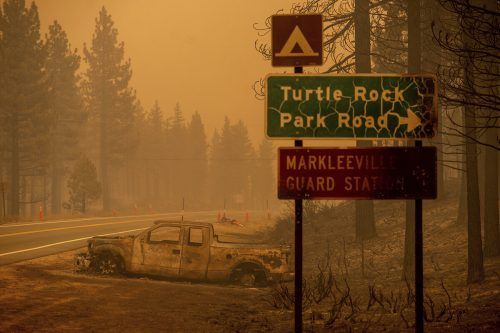 Das Tamarack Fire hat sich auf über 80 Quadratkilometern ausgebreitet. AP