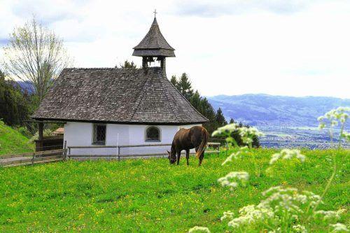Frühling bei der Kapelle in Furx. Alevtyna Ponamarova