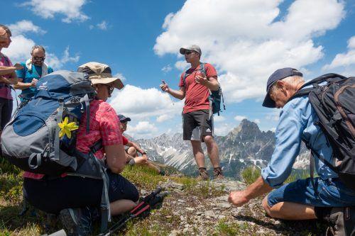 In den vier Modulen Wald, Wasser, Wiese und Gebirge lernten die Teilnehmer viel über die Vorarlberger Natur.