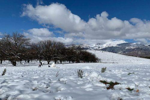 Am Westkap von Südafrika hat sich eine geschlossene Schneedecke gebildet. ap