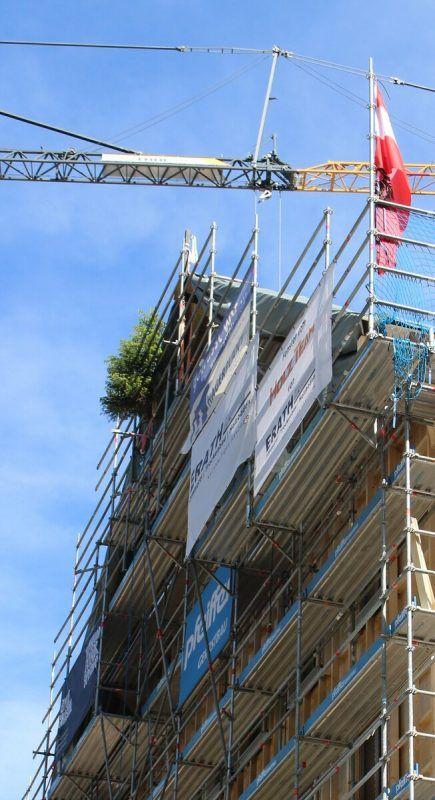 Auf dem ersten Haus des Projekts Berghaus Schröcken steht der Firstbaum.