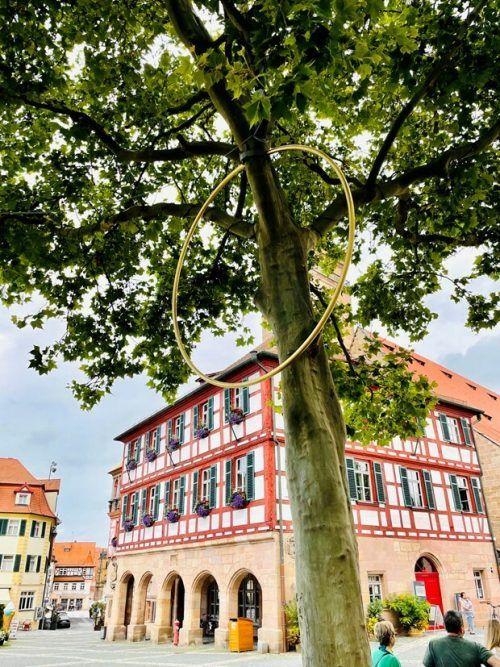 Baumpiercing von Marbod Fritsch für die Biennale in Schwabach. fritsch