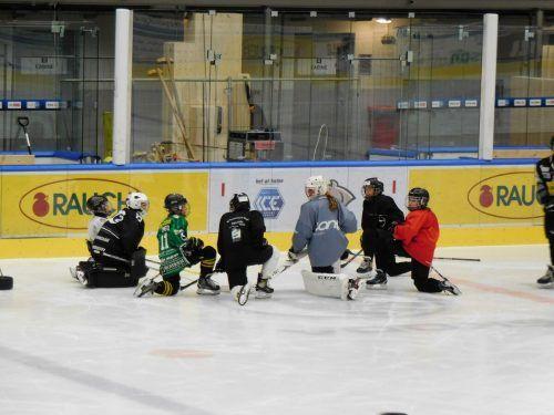 Der Dornbirner Eishockeynachwuchs läutete die Eiszeit im Messestadion ein.mima