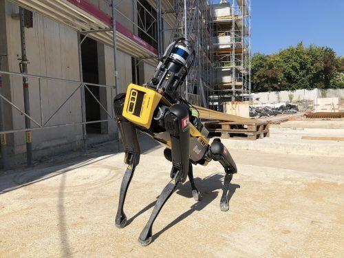 Der Roboterhund liefert Daten und Bilder.