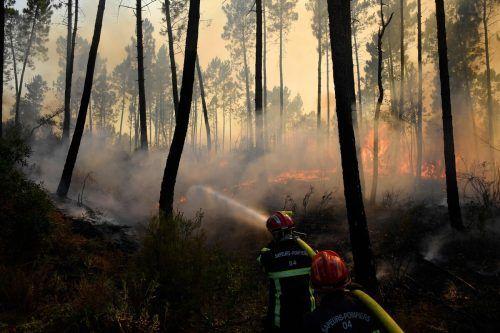 Die Ausbreitung des Feuers an der Côte d'Azur konnte eingedämmt werden. AFP