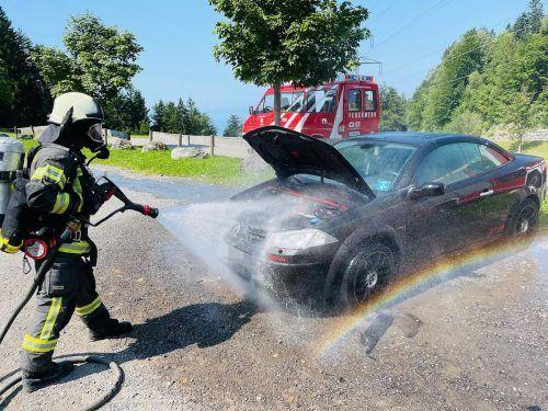 Die Lochauer Feuerwehr musste am Samstagnachmittag zu einem Einsatz auf den Pfänder ausrücken. feuerwehr Lochau
