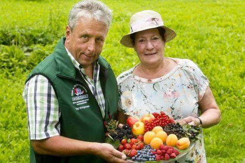 Die Obst- und Beerenbörse der Gartenbauvereine in Vorarlberg soll verhindern, dass überschüssige Ernte weggeworfen werden muss.OGV