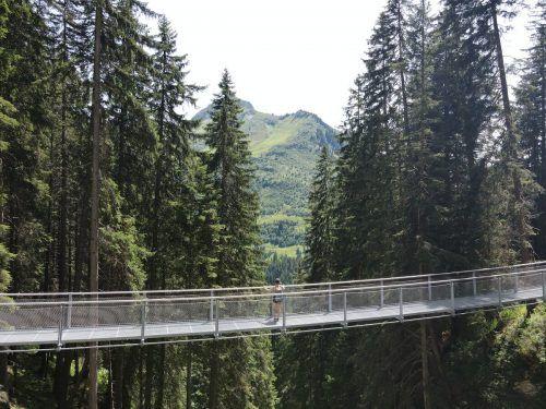 Die Umsetzung derHängebrücke Plattentobel stellt einen Meilenstein für das Damülser Wandergebiet dar.