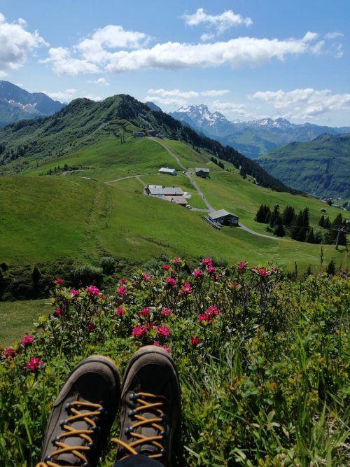 Dieses Foto machte VN-Leserin Trudi Scheier auf der Uga-Alpe.