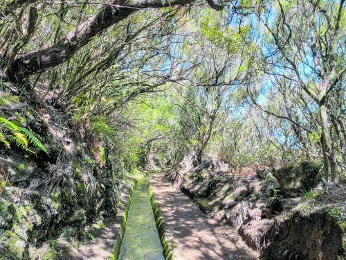 Entlang der Bewässerungskanäle (Levadas) auf Madeira kann man wunderbar wandern.