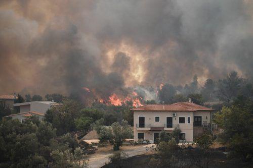 Hitze, Trockenheit und starke Winde fachen die Flammen immer wieder an. AFP