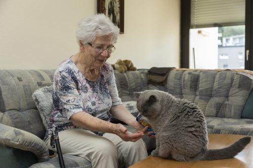 """Katze """"Cocko"""" frisst ihrem Frauchen buchstäblich aus der Hand."""