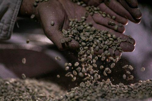 Konsumenten müssen für Kaffee bald tiefer in die Tasche greifen.Reuters