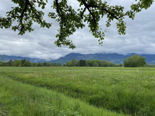 Naturschützer wollen weitere Varianten für die S 18 prüfen. MAyer