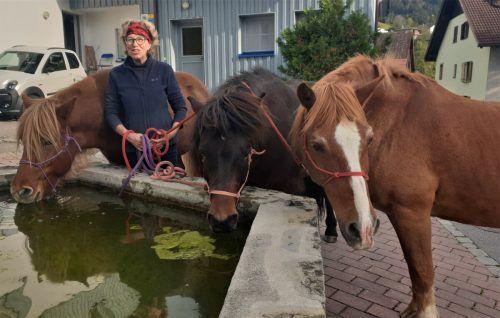 Renate Fleisch pflegt eine innige Beziehung zu ihren drei Pferden.