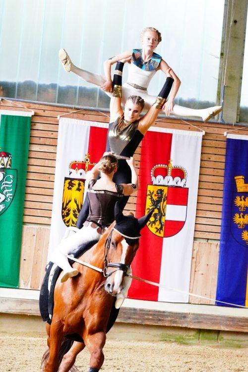 Akrobatik, Choreogradie, Harmonie und Eleganz – Voltigieren ist viel mehr als nur Turnen auf dem Pferd.Fuchshumer