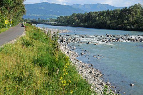 Am Harder Ufer rechts wird der Achdamm 30 Meter weit landeinwärts verlegt, das Bregenzer Achufer ist schon wieder begrünt. ajk